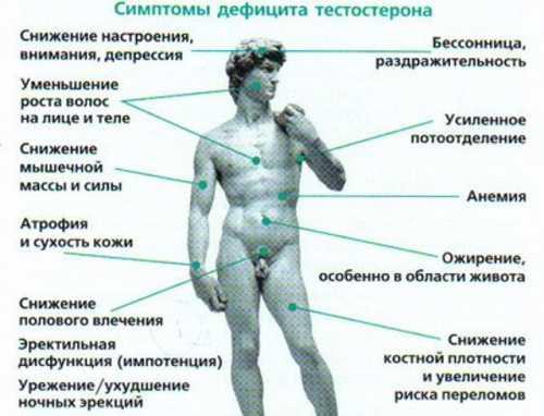 6 поводов посетить эндокринолога
