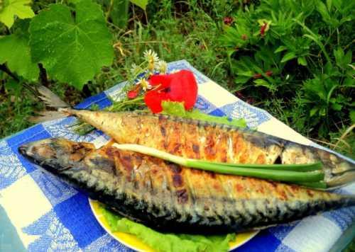 Скумбрия на мангале: рецепт с овощами и травами