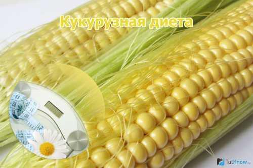 Кукурузная диета для эффективного похудения