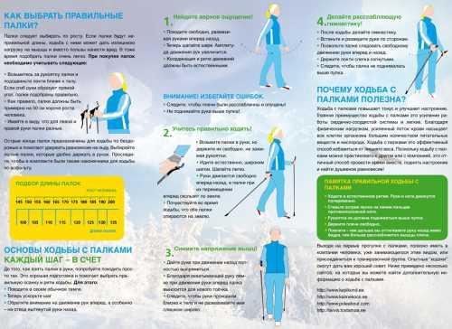 Правила скандинавской ходьбы с палками для пожилых